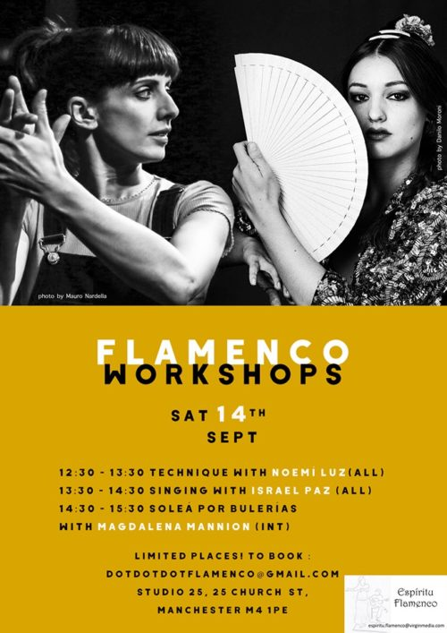 Flamenco dance, guitar, cante workshops Sat 14 September